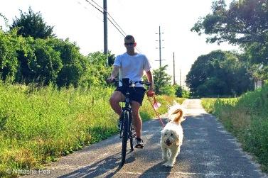 Massapequa Preserve dog, biker